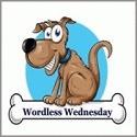 CP Wordless Wednesday